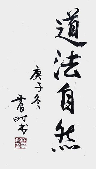 徐震时作品7《道法自然》.jpg